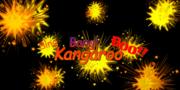 Bing Bang Boo Kangaroo